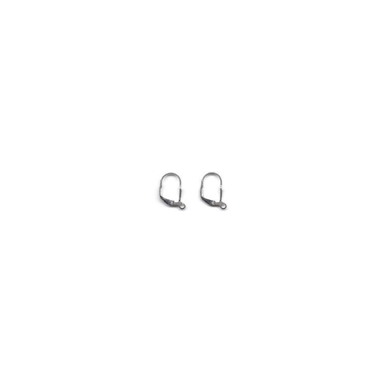 Silver Ear Hook